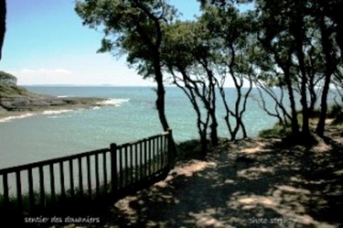 Joli appt de standing bord de mer royan chemin - Chambre d hote charente maritime bord de mer ...