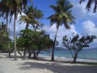Location gîte, chambres d'hotes MARTINIQUE Studio Bleu Soleil dans le département Martinique 972