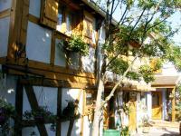 Location gîte, chambres d'hotes gitelsass67 dans le département Bas Rhin 67