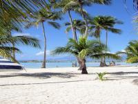 Location gîte, chambres d'hotes BUNGALOWS A STE ANNE  dans le département Guadeloupe 971