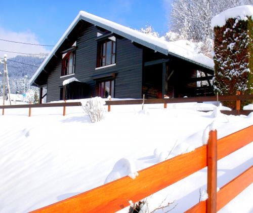 location chalet ski remiremont