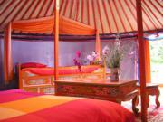 Location gîte, chambres d'hotes Campement de yourtes : les Ânes de Vassivière dans le département Haute Vienne 87