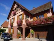"""Location gîte, chambres d'hotes Gîte ''les hirondelles"""" au pied des montagnes , tout à côté de la route des vins dans le département Bas Rhin 67"""