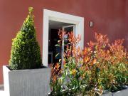 Location gîte, chambres d'hotes Gîte avec piscine 2/4 personnes Lamalou les Bains dans le département Hérault 34