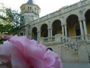 Location gîte, chambres d'hotes Château chambres d' hôtes Chambres dédiées à l'opéra Italien, décorées avec goût dans le département Hérault 34