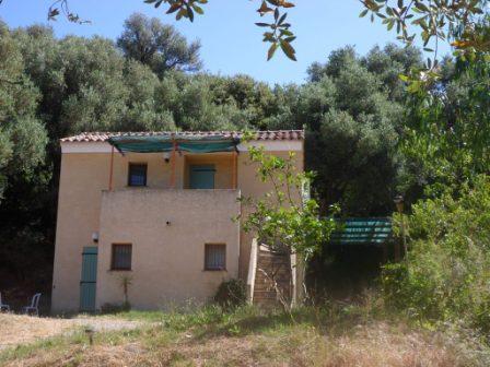 A casa di l 39 alivu patrimonio patrimonio for Chambre d agriculture haute corse