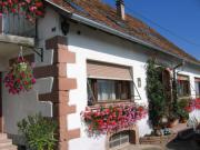Location gîte, chambres d'hotes Les floralies, 30 mn Strasbourg, 20 mn Colmar dans le département Bas Rhin 67