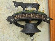 Location gîte, chambres d'hotes Un gîte et huit ânes dans le département Ain 1