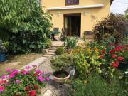 Location gîte, chambres d'hotes Maison de Vacances Chez ALISA, route des Vins dans le département Haut Rhin 68