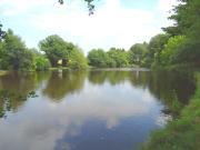 Location gîte, chambres d'hotes Gite de pêche avec étang privé dans la Creuse dans le département Creuse 23