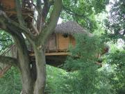 Location gîte, chambres d'hotes Les cabanes de la Grande Noë dans le département Orne 61