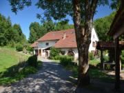 Location gîte, chambres d'hotes Gite 3 pièces 6 personnes, étang dans le département Vosges 88