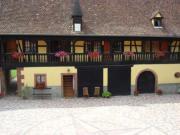 """Location gîte, chambres d'hotes LA FERME MICHEL """"LE BOUTON D'OR"""" dans le département Bas Rhin 67"""