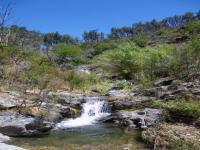 Location gîte, chambres d'hotes nature et aventure, au coeur du massif des maures dans le département Var 83